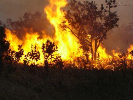 Foto queimadas 2