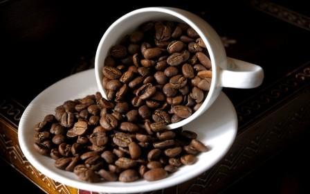 Fotio café