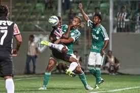 Galo e Palmeiras